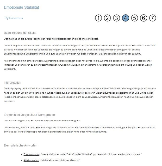 Persönlichkeitsfragebogen: Auszug des Ergebnisberichts